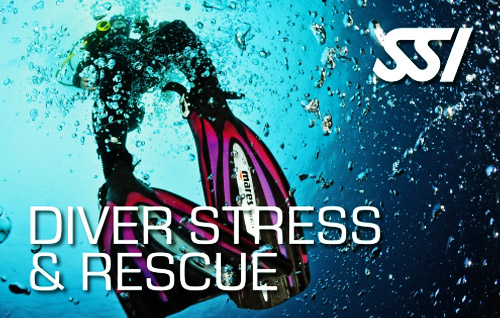 06 diver stress rescue title