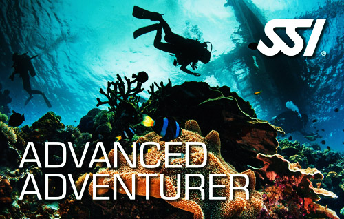 04 advanced adventurer title