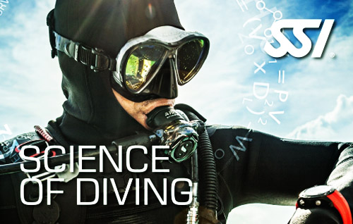 11 science of diving title